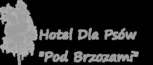 ekskluzywny hotel dla psów warszawa